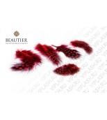 Набор красных перьев